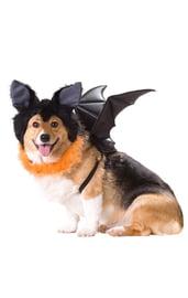 Костюм летучей мыши для собак