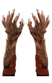 Мохнатые перчатки волка