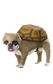Костюм для собаки Черепаха