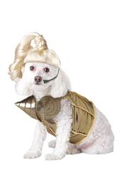 Костюм для собаки Поп-королева