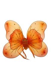 Оранжевые крылья бабочки с цветочками