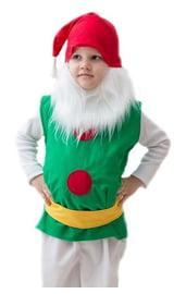 Детский костюм Бородатого гномика