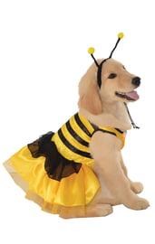 Костюм пчелы для собаки