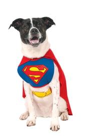 Костюм Супермена собаки