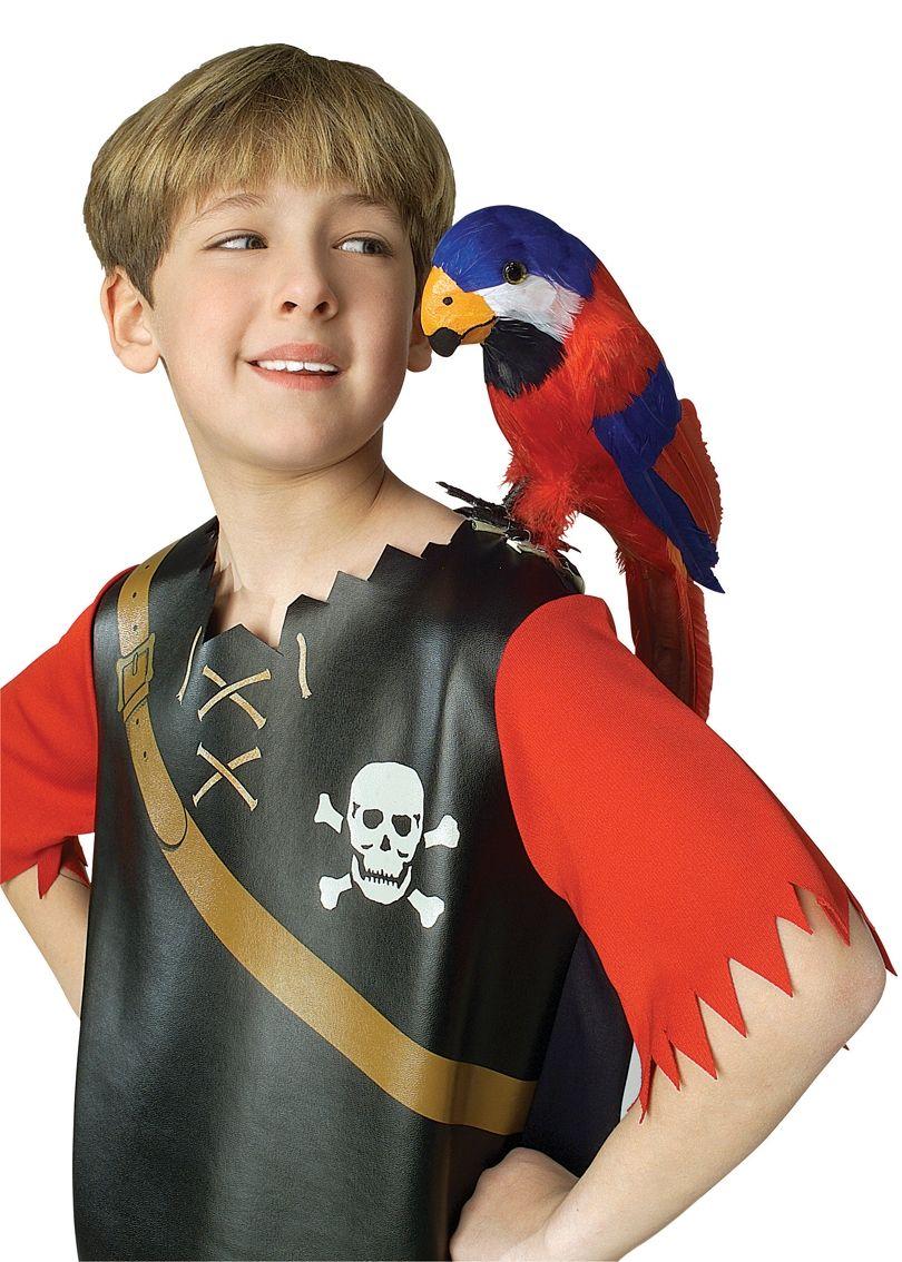 Пернатый попугай