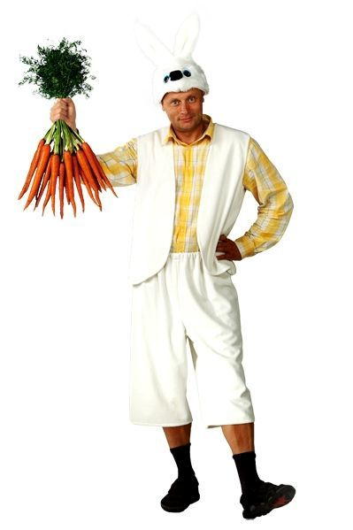 Мужской костюм Зайца (52) пена top house д плит свч печей 500мл