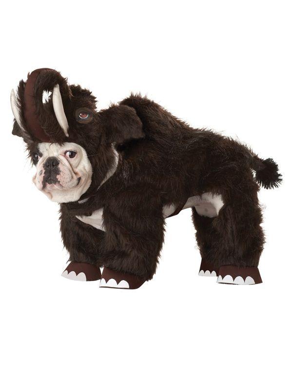 Костюм для собак Пушистый мамонт (Боксер) - Животные и зверушки