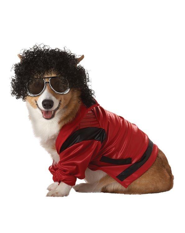 Костюм для собаки Поп-король (Боксер) - Юмор