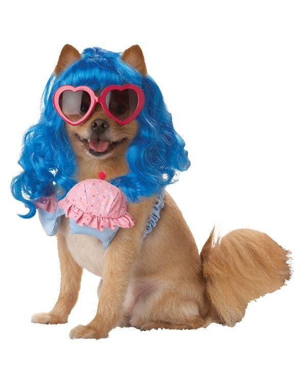 Костюм для собаки Девушка-кекс (4) -  Знаменитости