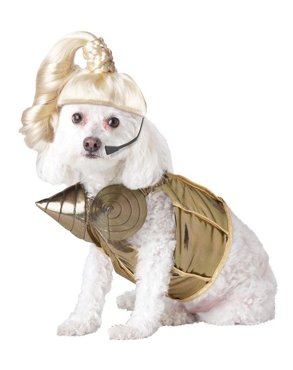 Костюм для собаки Поп-королева (Боксер) парик для волос