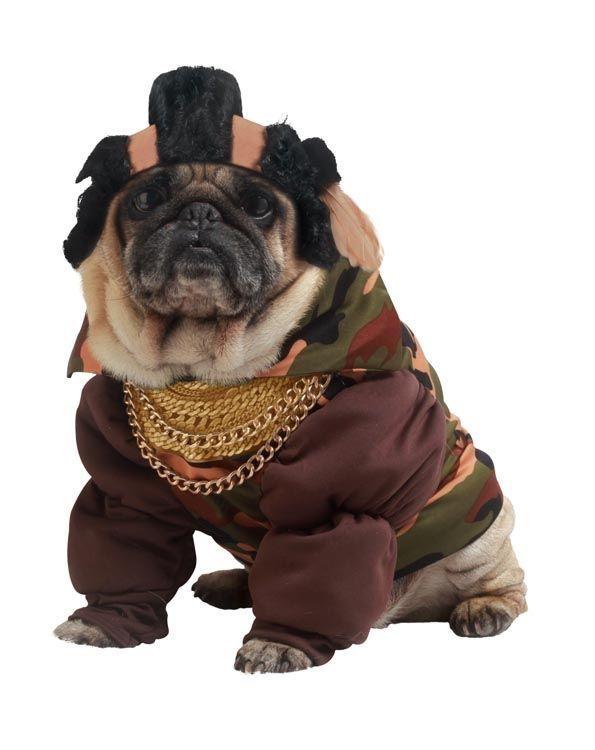 Костюм для собаки Пит Буль (Бишон Фризе) - Юмор