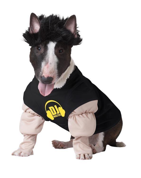 Костюм для собаки DJ мастер (Боксер) - Юмор