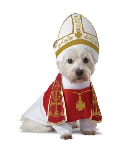 Костюм Папы Римского для собаки (2) костюм римского воина 50 54