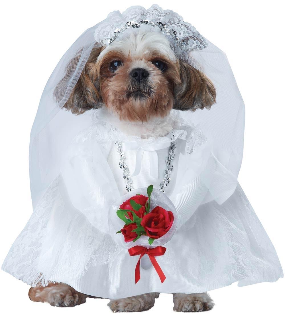 Костюм для собак Невеста (2) белое кружевное платье в ростове