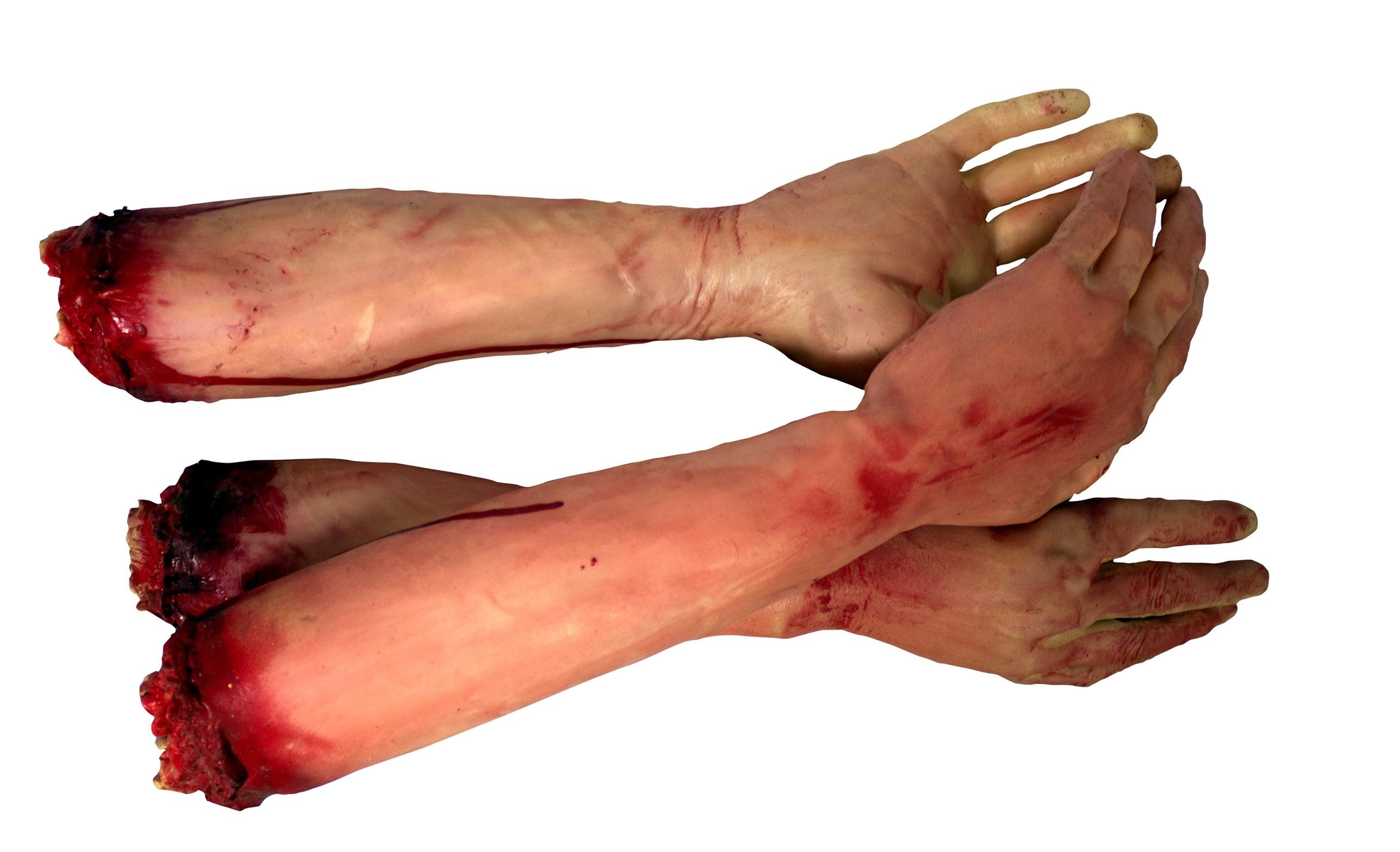 Пара рук в крови (UNI) газета из рук в руки собаку той терьера тюмень