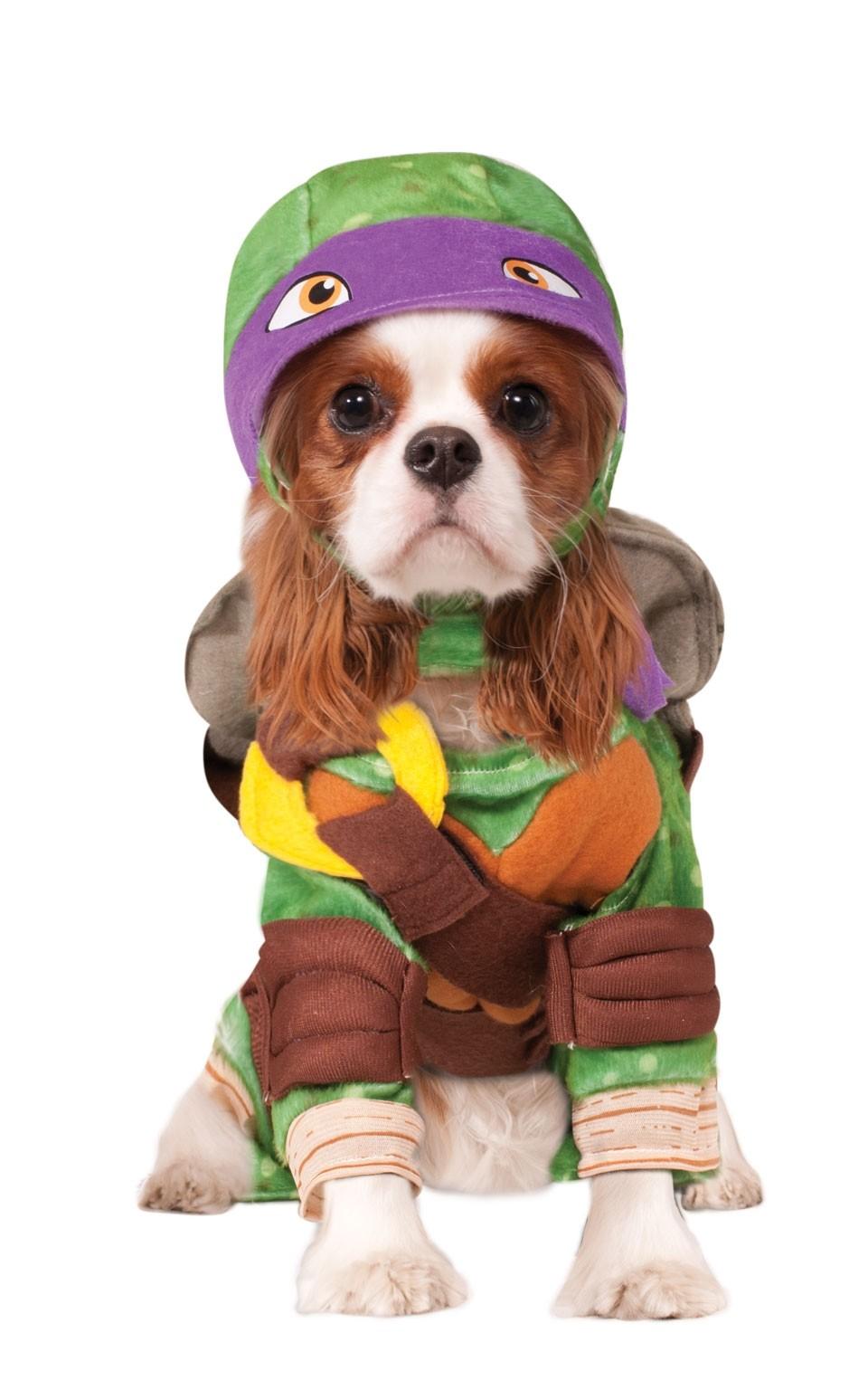 Костюм для собаки Черепашка Донателло (4) карнавальный костюм черепашка ниндзя р30