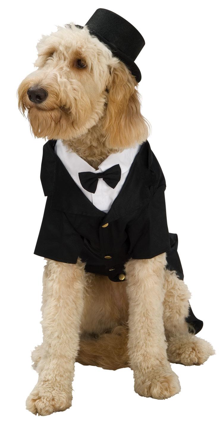 Костюм Собачьего Жениха (S) костюм жениха в харькове
