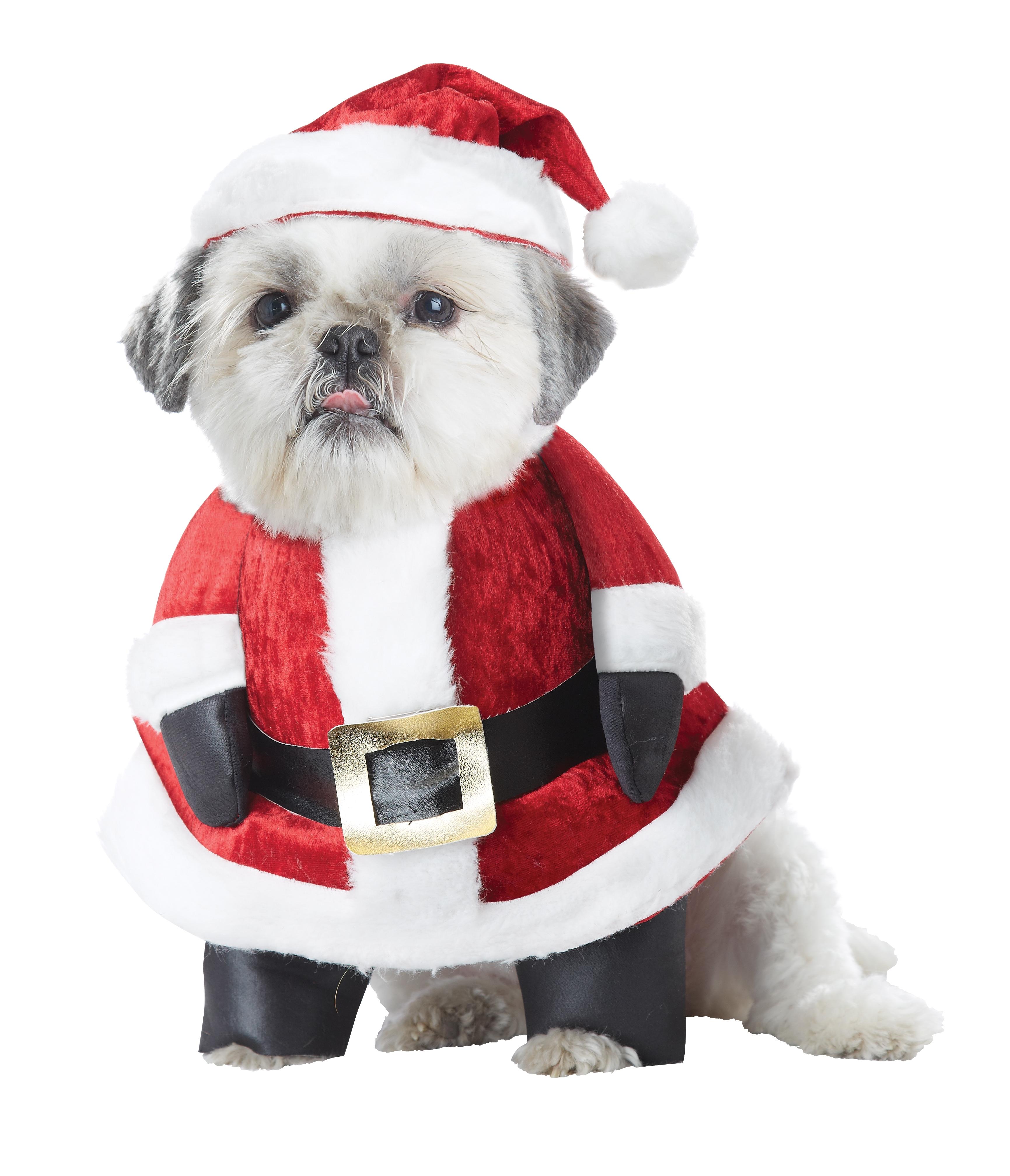 Костюм Санты для собаки (4) костюм прекрасной шапочки 30