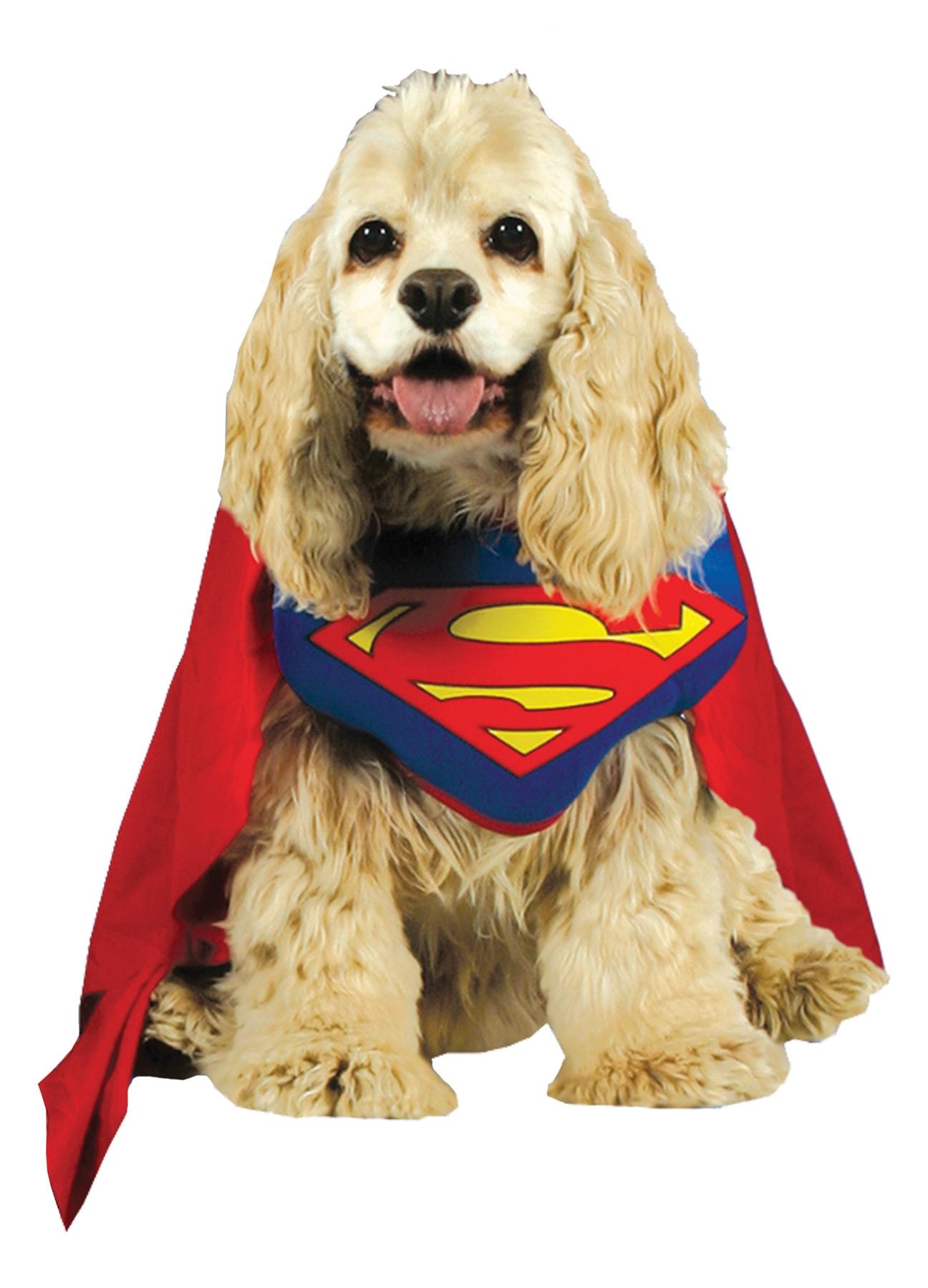 Костюм супермена для собаки (4-4) б у вольер для собаки в кемерово