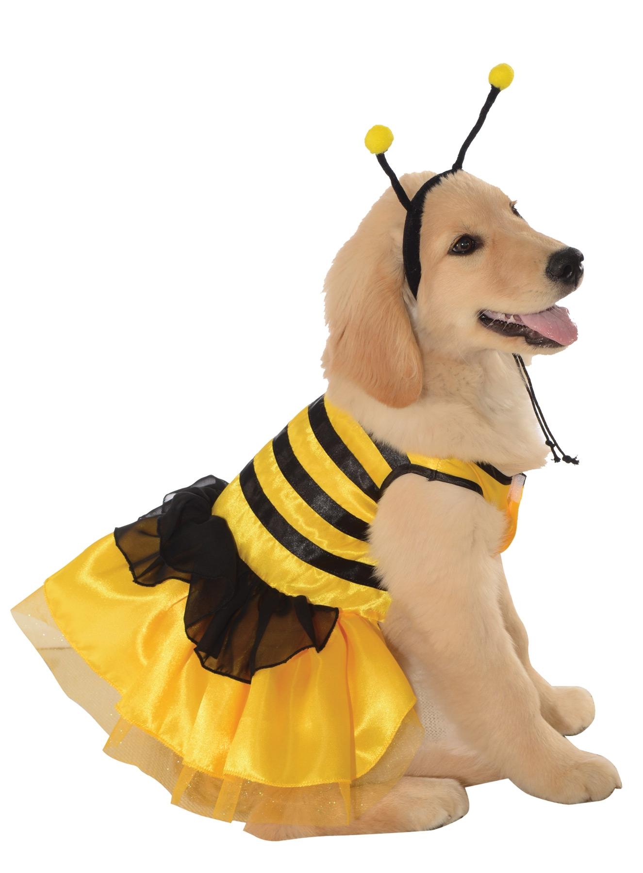 Костюм пчелы для собаки (M) - Животные и зверушки